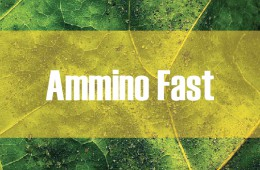 Ammino Fast
