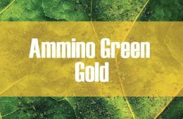 Ammino Green Gold