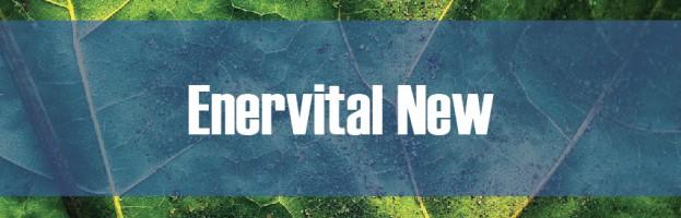 Enervital New