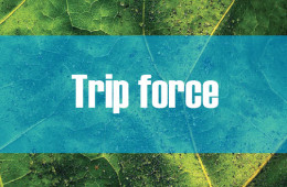Trip force