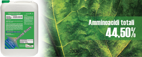 ammino_green