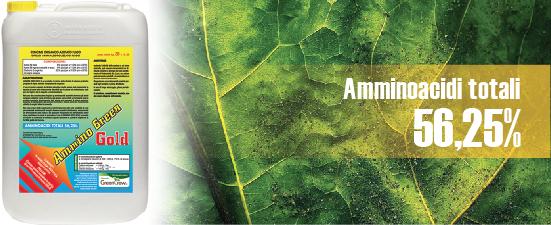 ammino_green_gold