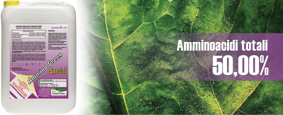 ammino_green_special