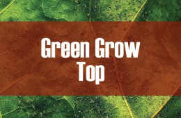 Green Grow Top